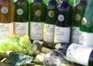 Weinpresentation